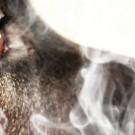 Le tabac est également nocif pour nos animaux